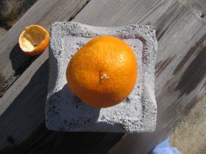 Vef appelssina